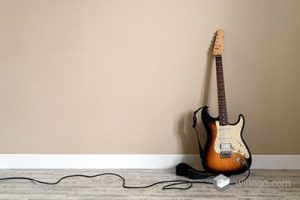 Guitar cable with the guitar and the white background